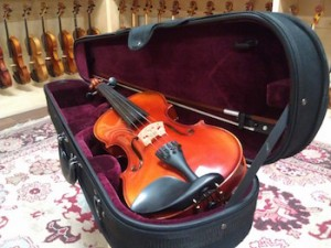 gifts for violinists - The Hot Fiddle